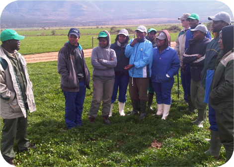 Leonard Mavhungu, Manager of the Fort Hare Dairy Trust speaks to new dairy farmers