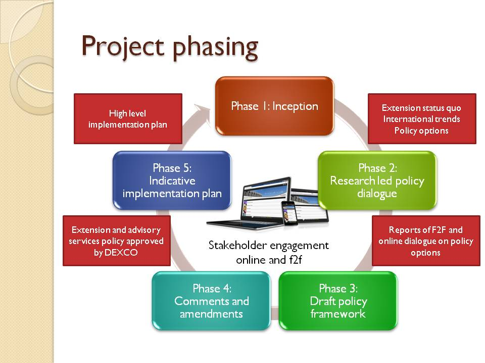 Phases in the policy development process