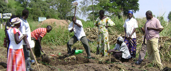 Farmer Field Schools have had positive impacts in East Africa. Pic: International Institute for Rural Reconstruction